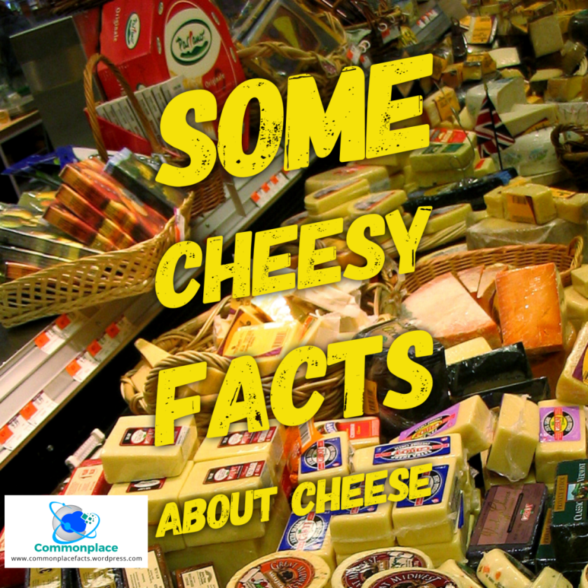 Some cheesy facts about cheese